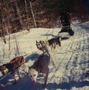 Garrison driving a dogsled team in the White Mountains for a leadership development program.